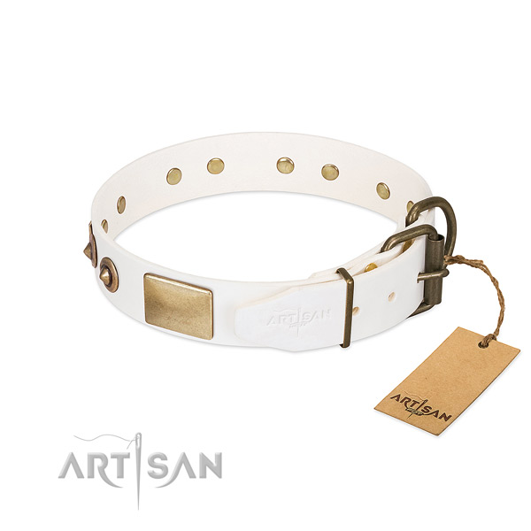 Rust-proof traditional buckle on leather dog collar for your doggie