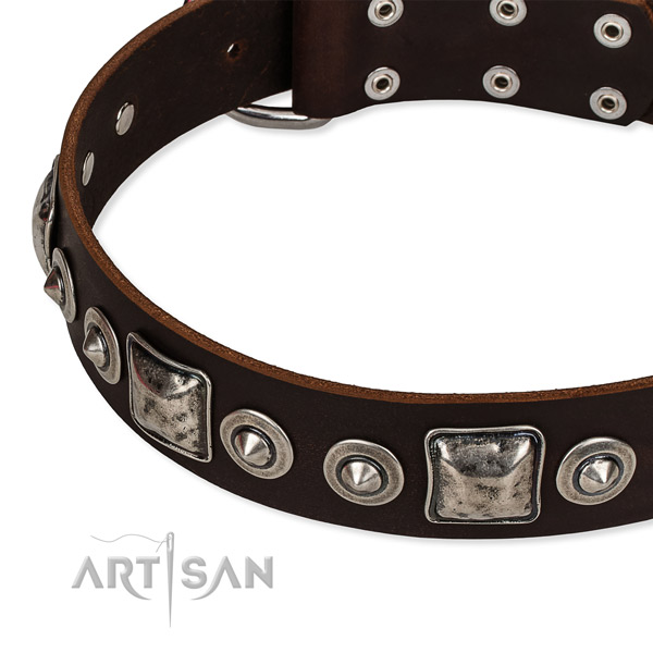 Full grain natural leather dog collar made of high quality material with embellishments