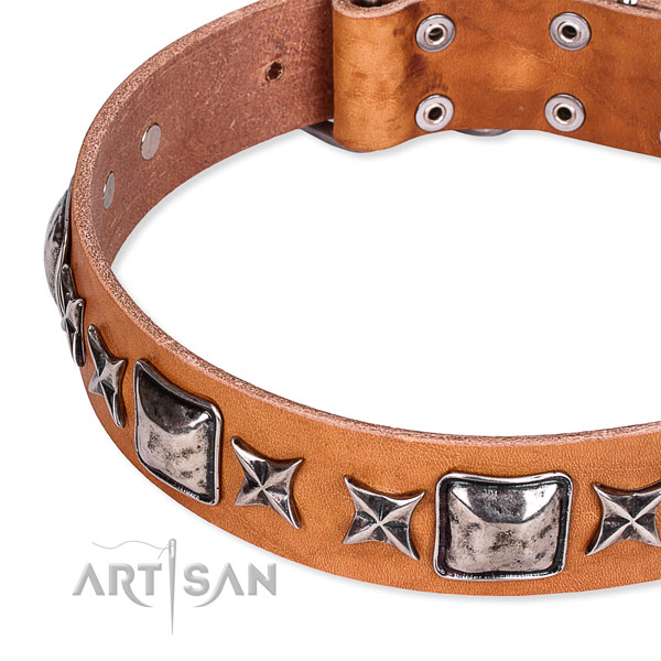 Stylish walking studded dog collar of fine quality full grain natural leather