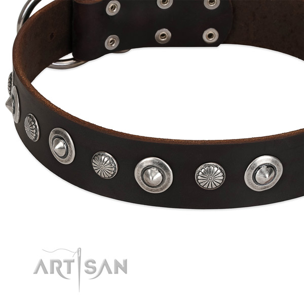 Unusual embellished dog collar of fine quality full grain natural leather