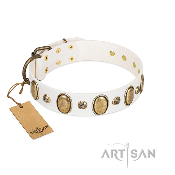 Leather dog collar of best quality material with significant studs