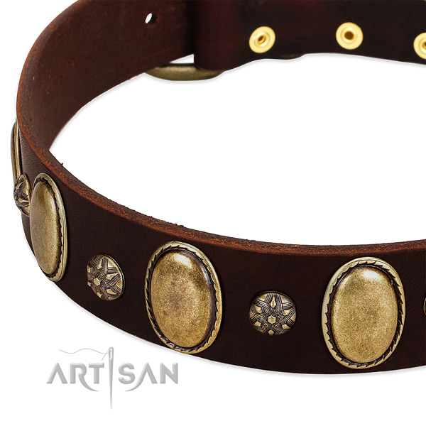 Everyday walking soft to touch full grain leather dog collar