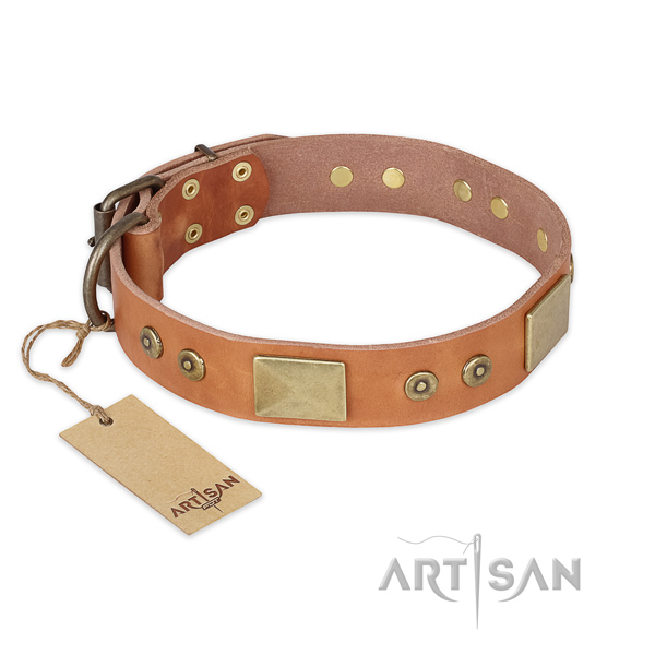 Unique leather dog collar for everyday use