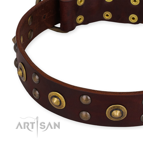 Leather collar with rust-proof buckle for your lovely pet