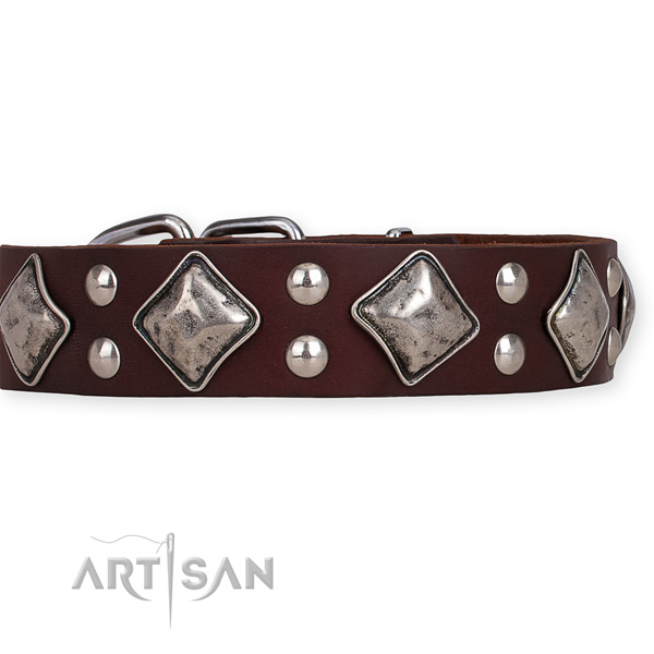 Genuine leather dog collar with stunning durable studs