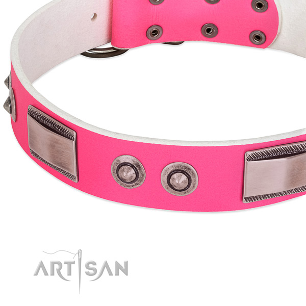 Fashionable genuine leather collar with embellishments for your doggie