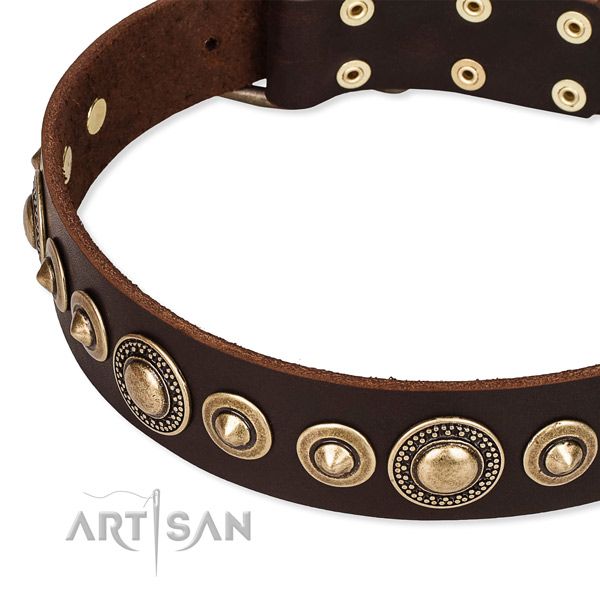 Strong full grain genuine leather dog collar created for your impressive canine