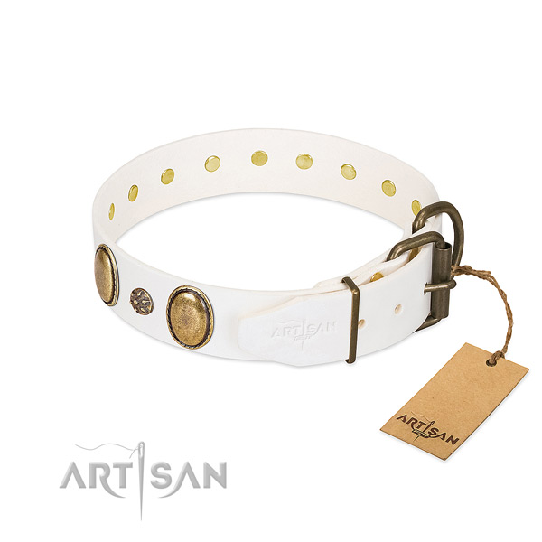 Stylish walking quality leather dog collar with embellishments