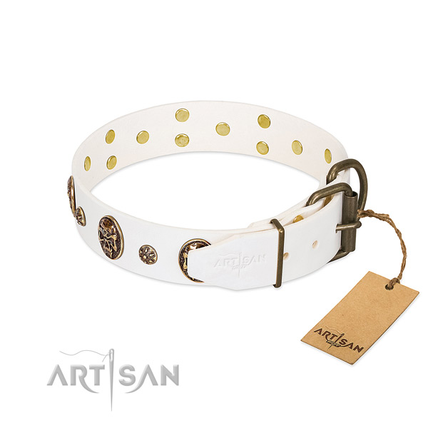 Reliable decorations on genuine leather dog collar for your pet