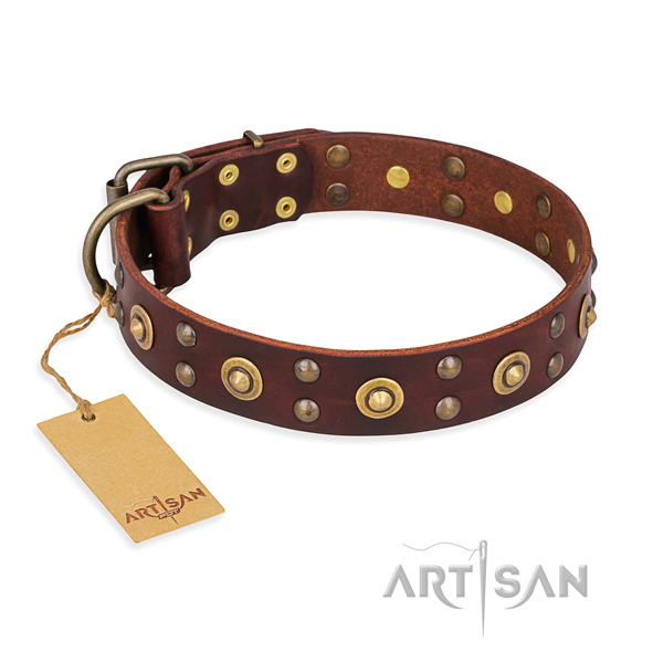 Exquisite leather dog collar with rust-proof traditional buckle