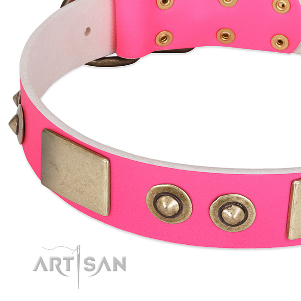 Rust resistant embellishments on genuine leather dog collar for your pet