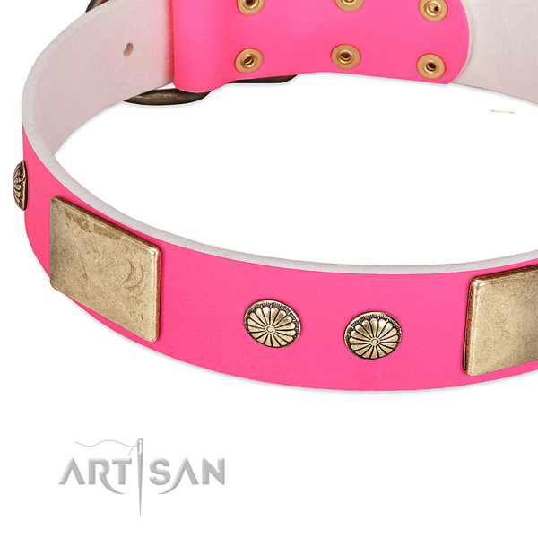 Corrosion proof D-ring on leather dog collar for your dog