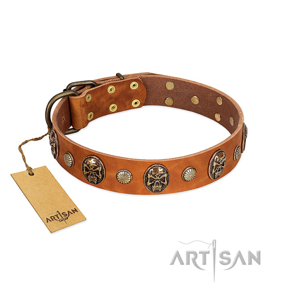 Amazing leather dog collar for easy wearing