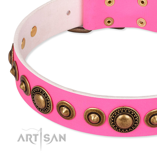 Durable leather dog collar made for your handsome doggie