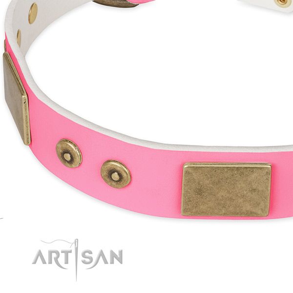 Genuine leather dog collar with adornments for everyday use