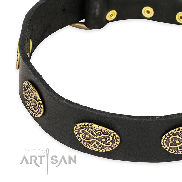 Adorned full grain natural leather collar for your handsome four-legged friend