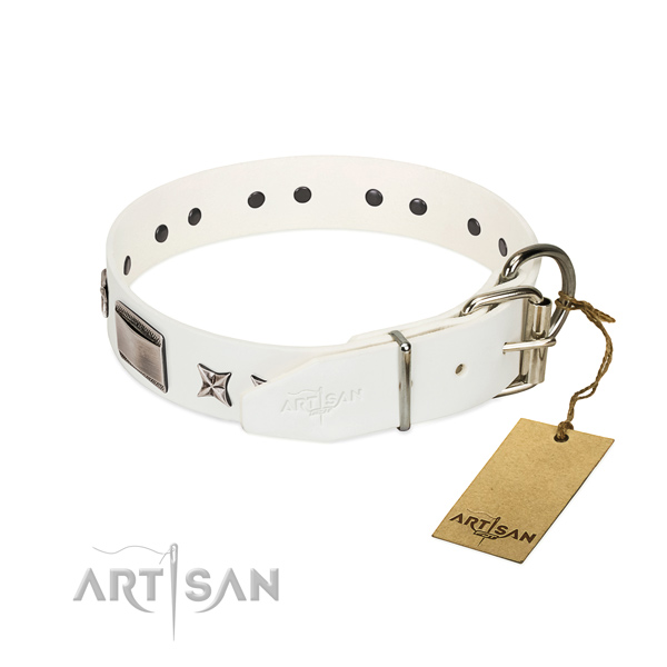Designer collar of full grain genuine leather for your impressive canine