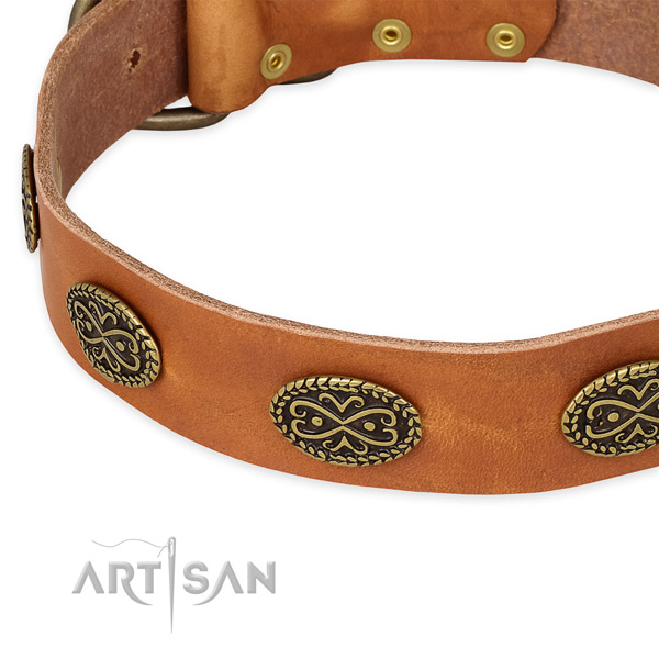 Best quality leather collar for your handsome pet