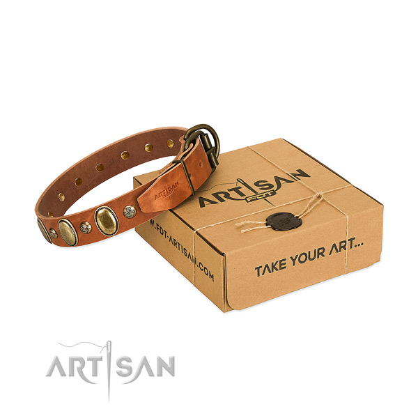 Stunning natural leather dog collar with durable D-ring