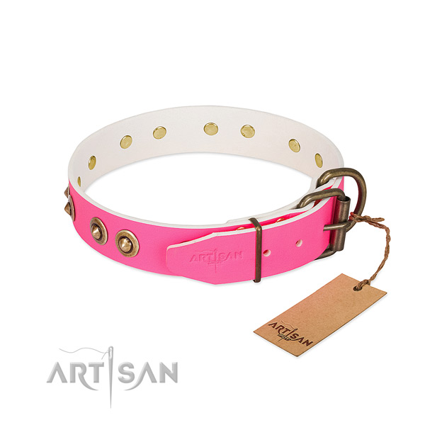 Natural genuine leather dog collar with corrosion resistant fittings and embellishments