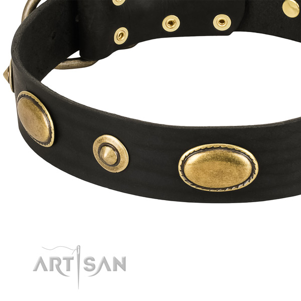 Reliable fittings on natural leather dog collar for your canine