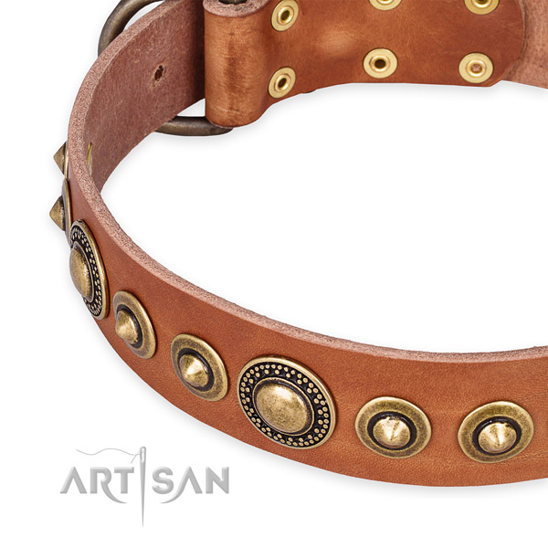 Quality full grain leather dog collar handcrafted for your stylish pet