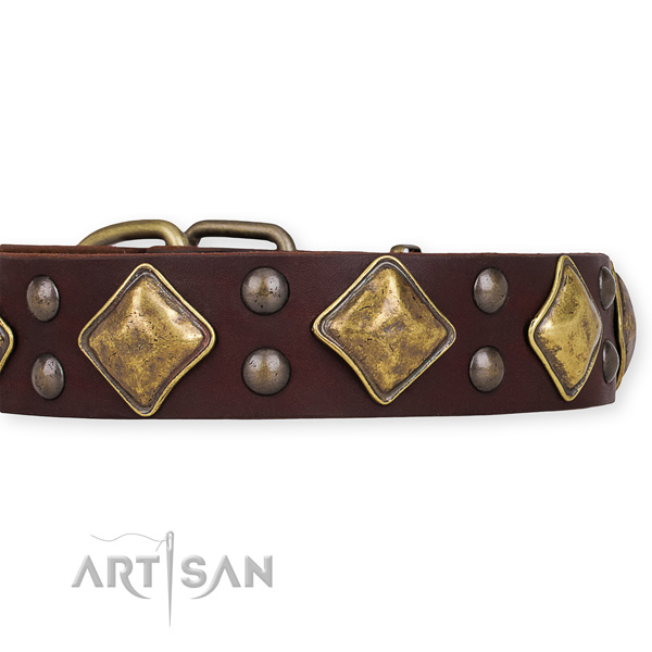Natural leather dog collar with stunning strong studs