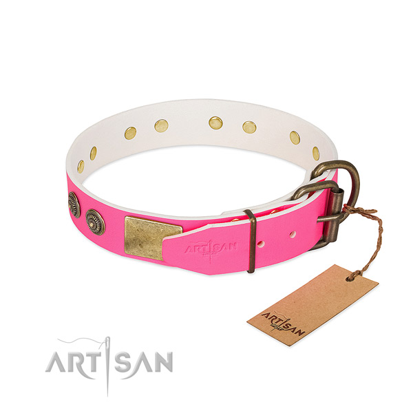 Corrosion resistant hardware on genuine leather collar for stylish walking your four-legged friend
