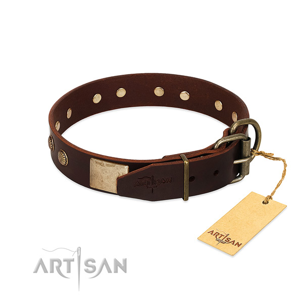 Reliable buckle on basic training dog collar