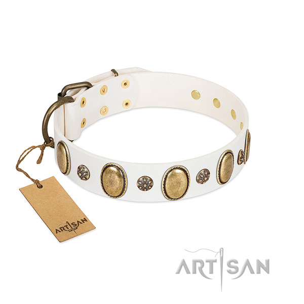 Fancy walking soft leather dog collar with studs