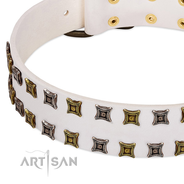 Full grain leather dog collar with embellishments for your stylish four-legged friend