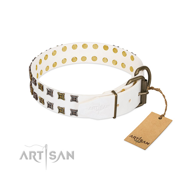 Leather collar with unusual adornments for your pet