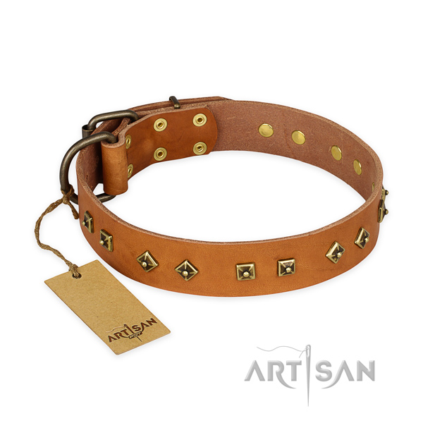 Exquisite leather dog collar with strong hardware