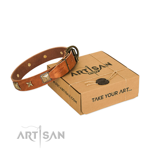 Inimitable leather collar for your impressive pet
