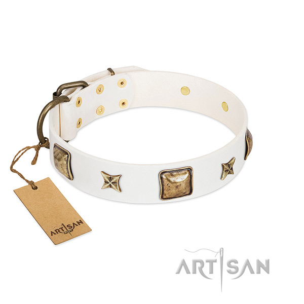 Exquisite leather dog collar for walking