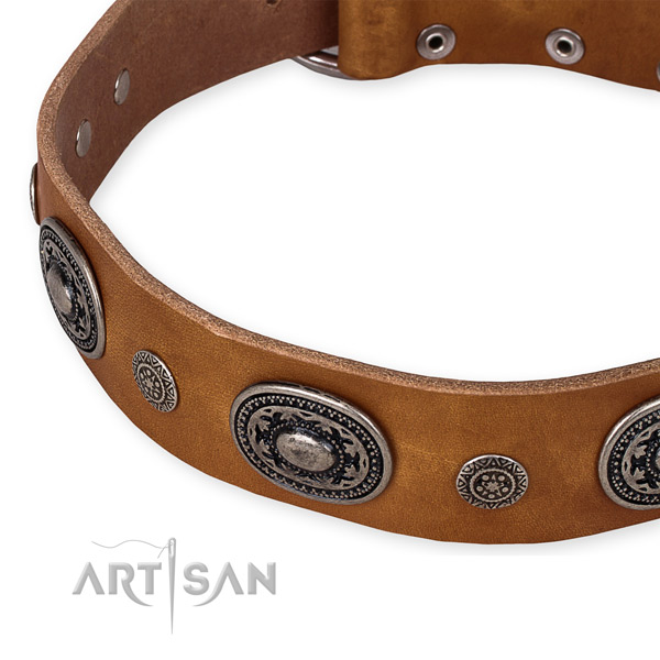 Best quality full grain leather dog collar handmade for your handsome four-legged friend
