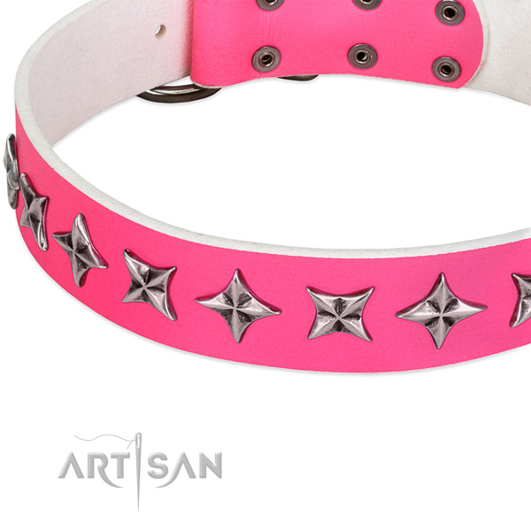 Basic training embellished dog collar of quality leather