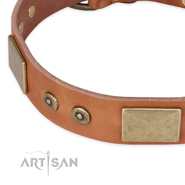 Rust resistant D-ring on natural genuine leather dog collar for your four-legged friend