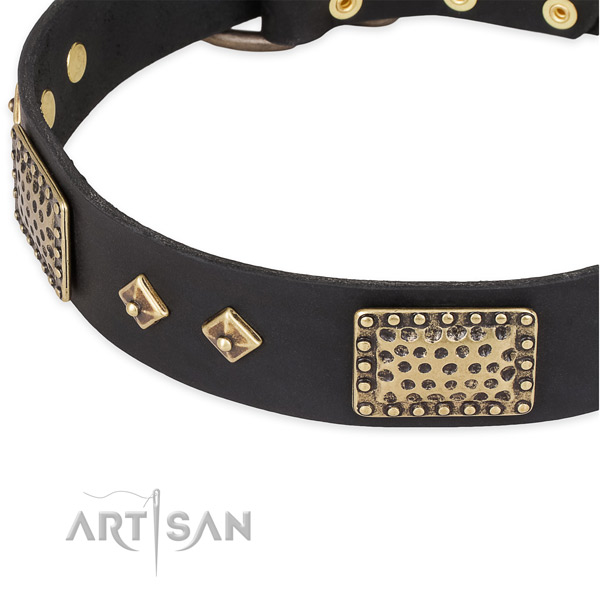 Rust resistant studs on full grain natural leather dog collar for your doggie