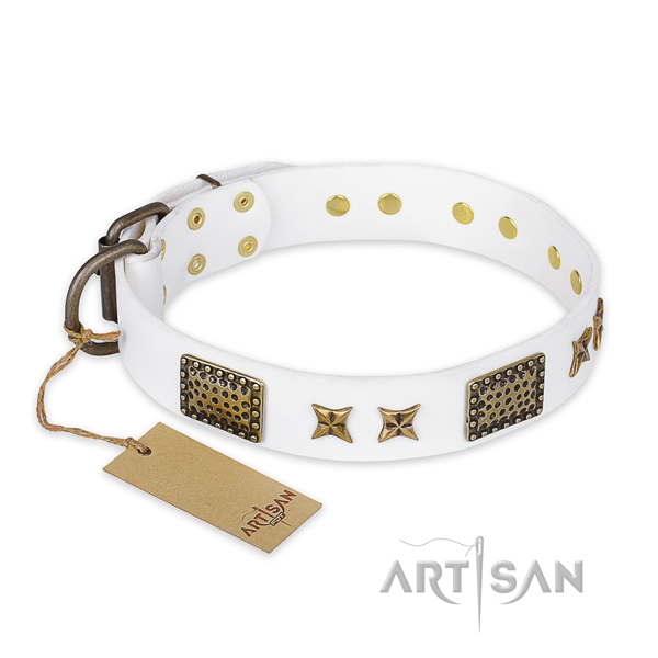 Stylish genuine leather dog collar with corrosion resistant fittings