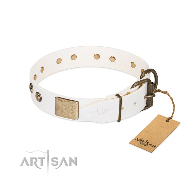 Durable hardware on handy use dog collar