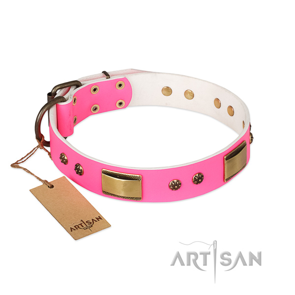 Exceptional natural genuine leather collar for your four-legged friend