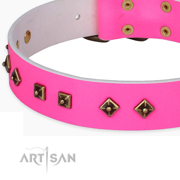 Easy adjustable full grain leather collar for your impressive doggie