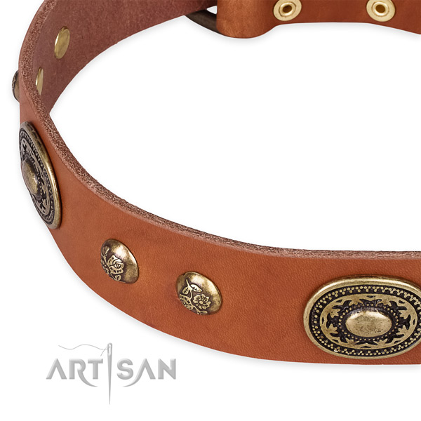 Designer genuine leather collar for your stylish canine