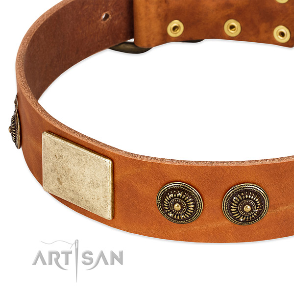 Unique dog collar handcrafted for your impressive doggie