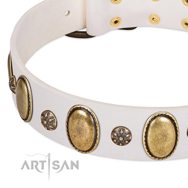 Fancy walking soft to touch leather dog collar with adornments