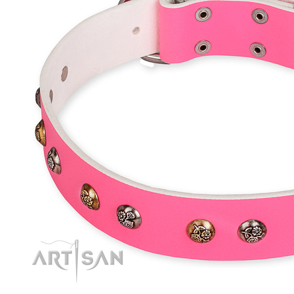 Genuine leather dog collar with exceptional corrosion resistant decorations