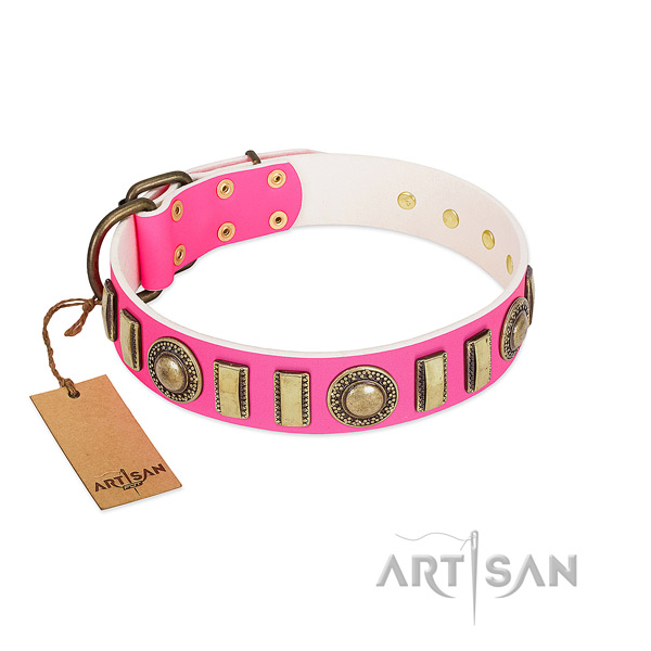 Adorned full grain natural leather dog collar with durable buckle