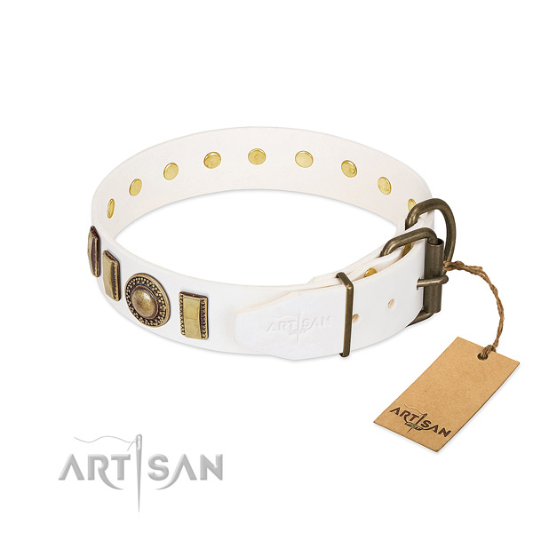 Trendy full grain natural leather dog collar with reliable fittings