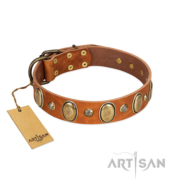 Leather dog collar of best quality material with exquisite decorations